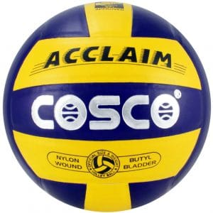 Cosco volleyball (Acclaim)